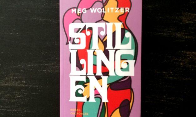 """""""Stillingen"""" af Meg Wolitzer"""