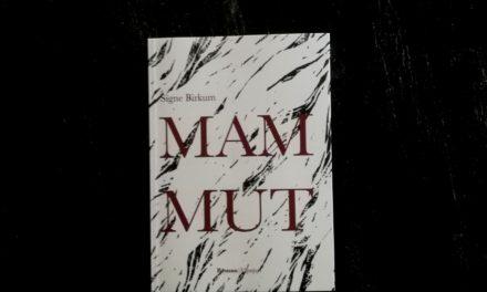 """Mammut"" af Signe Birkum"
