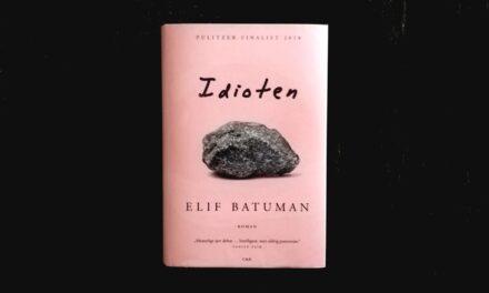 """""""Idioten"""" af Elif Batuman"""